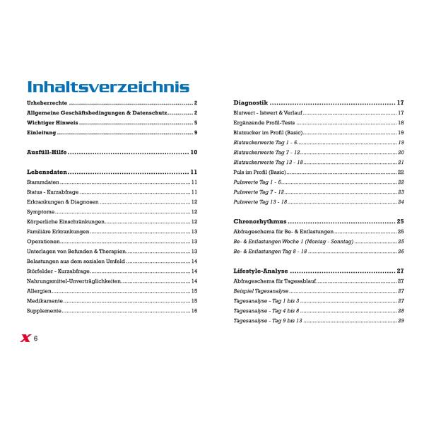 Lifestyle-Analyse - Inhaltsverzeichnis Seite 6